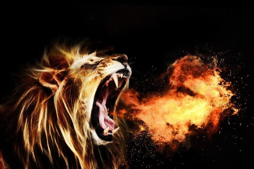 ... Lion HD Wallpapers | Lion HD Pictures | Free Download – HD .