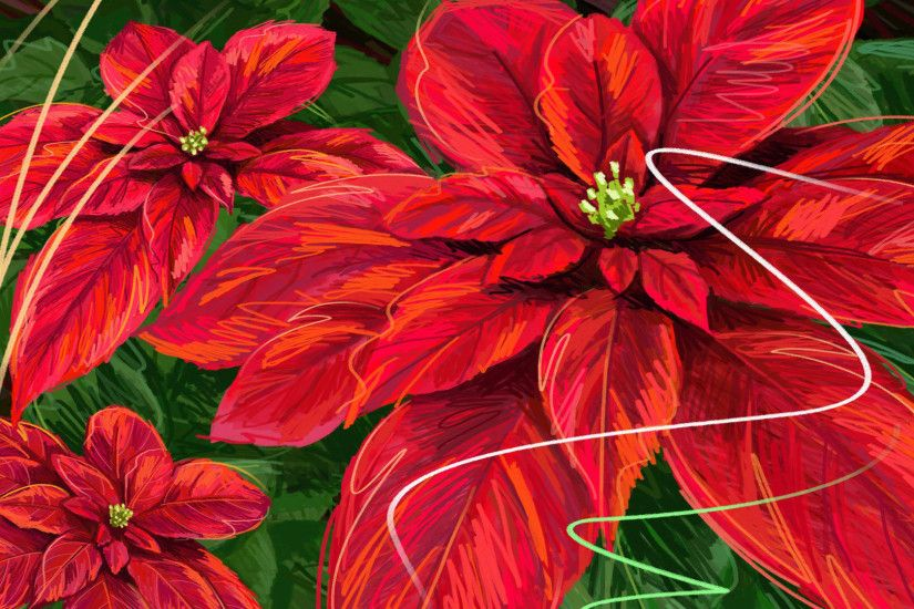 Pics Photos - Bright Red Poinsettia Flowers On An Old Wood .
