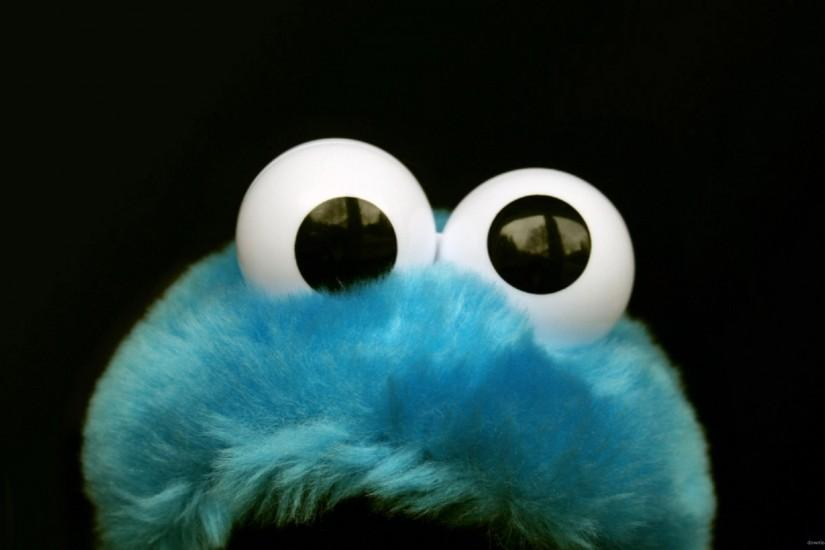 Cookie Monster Fluffy Toy for 2560x1440