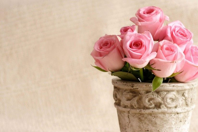 Preview wallpaper roses, flowers, pot, petals 1920x1080