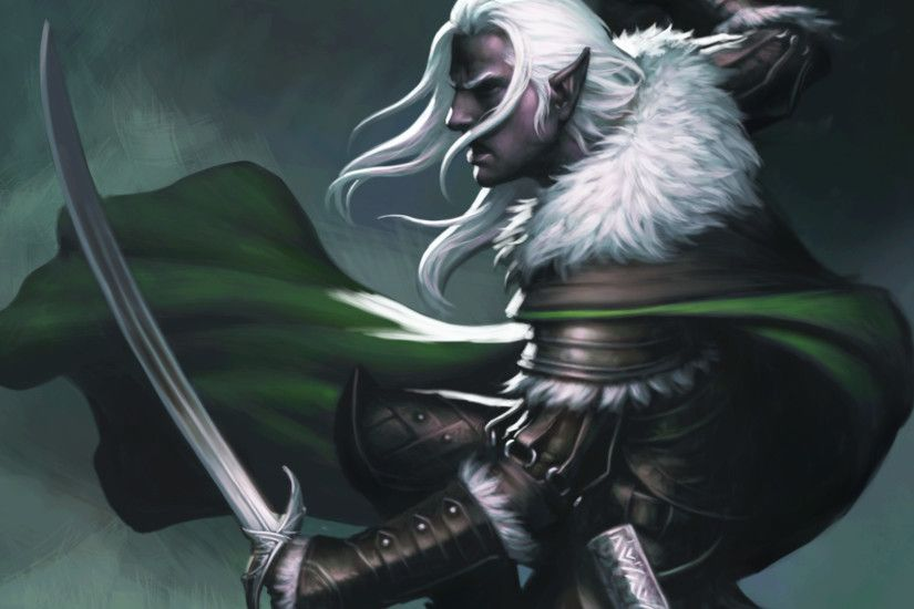 Neverwinter Other Drizzt Do'Urden's Ally
