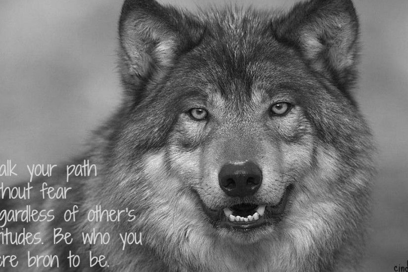 Native American Wolf Pack Quotes Wallpapers