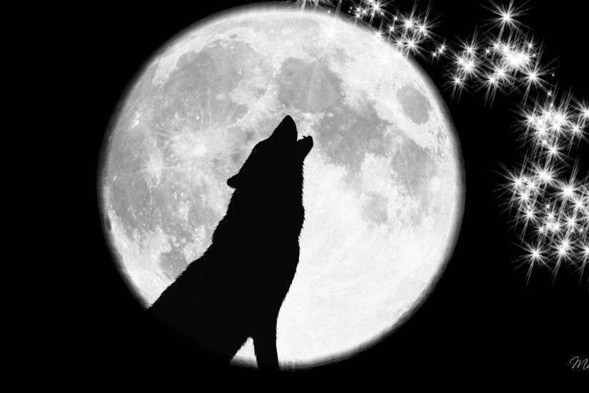 Collection of Wolf Howling At The Moon Wallpapers Wallpaper Cave .