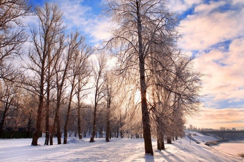 winter background belarus bright chill december festive forest landscape  nature pathway quiet road rural scene season
