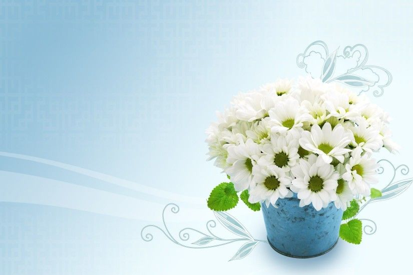 White Flowers Wallpaper for PC Full HD Pictures 1600×1143 White Flowers  Images Wallpapers (