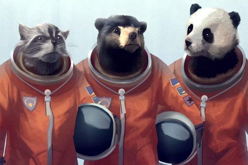 Animals Artwork Bears Cosmonaut Furry Panda Raccoons Wallpaper .