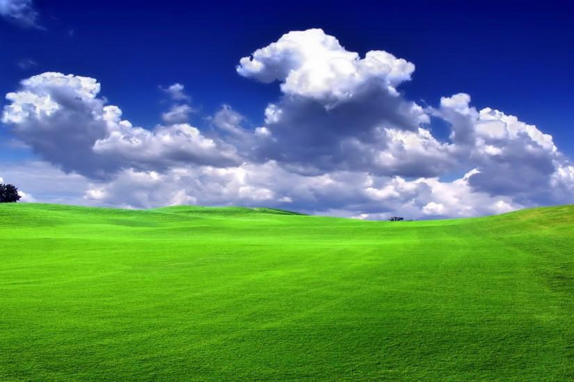 free grass wallpaper 1920x1200 for pc