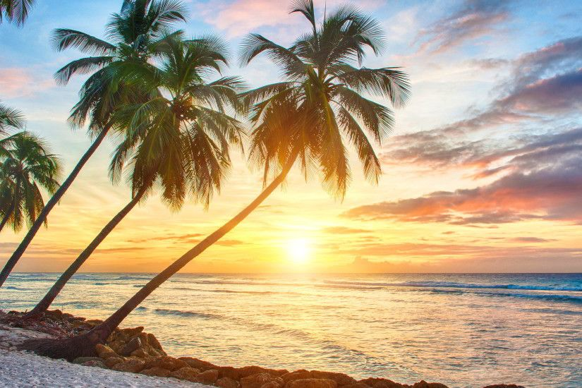 Tropical Sunset Wallpaper hd Tropical Sunset hd Wallpapers