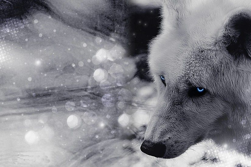 Timber Wolf Wallpaper Design Ideas ~ Hd White Timber Wolves .
