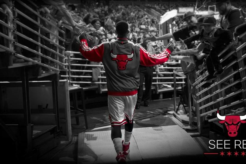 chicago bulls wallpaper free desktop wallpapers