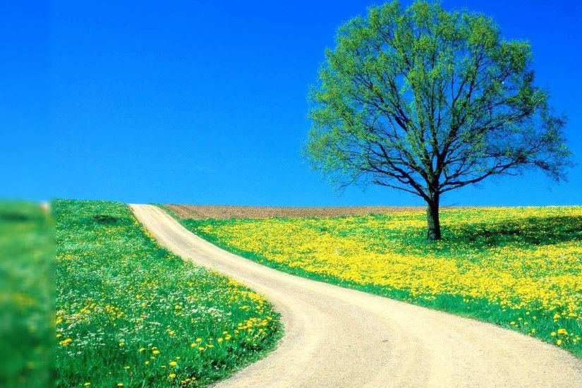 spring-nature-wallpaper-desktop-background.jpg