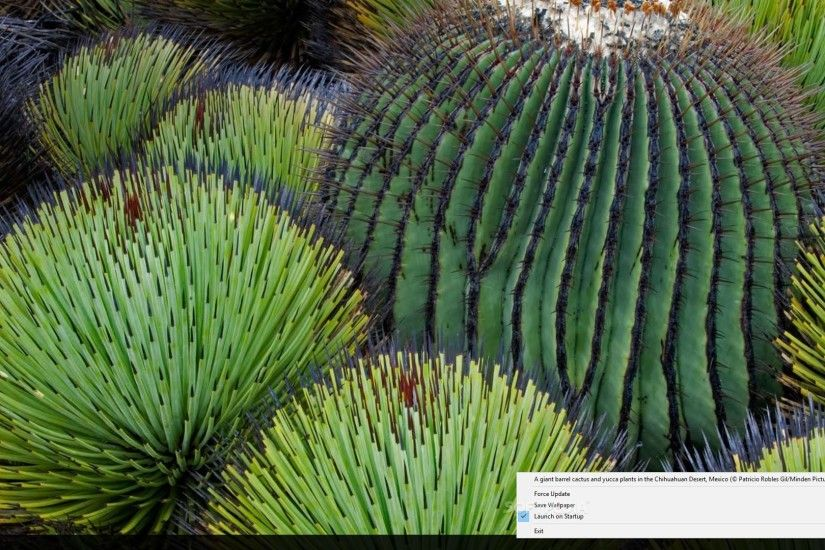 Bing Wallpaper - The application sets the Bing image of the day as your  wallpaper automatically