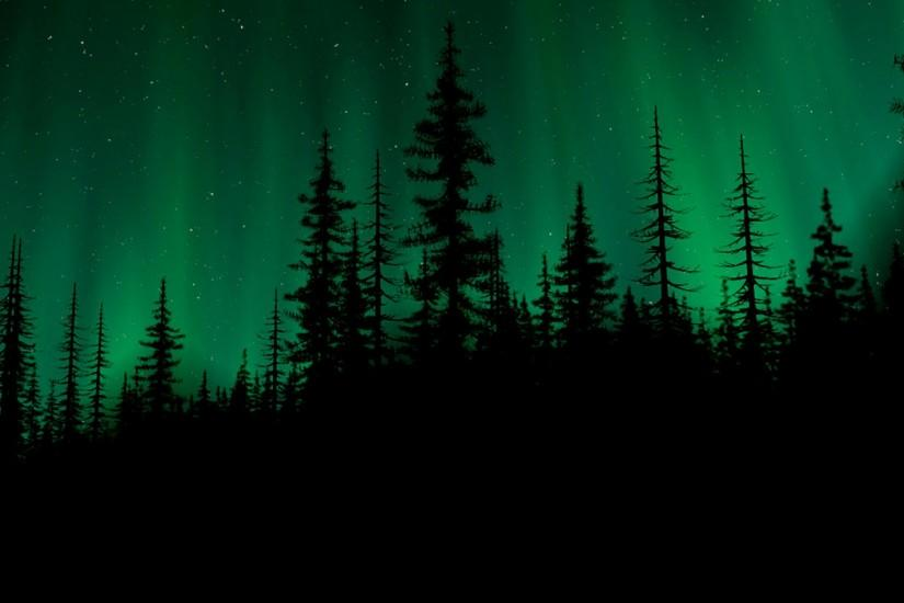 widescreen dark forest background 1920x1200 for iphone 5