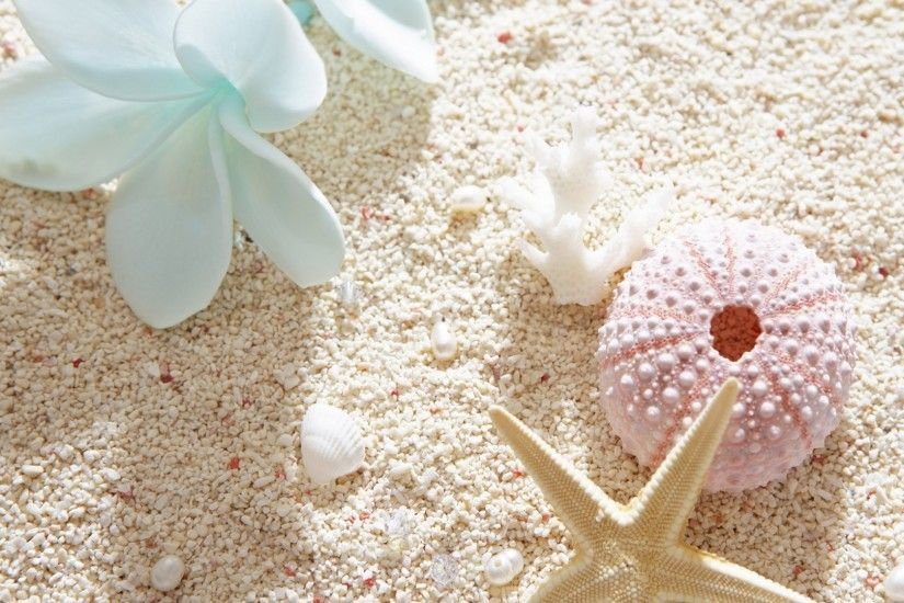 Preview wallpaper flowers, sand, seashells, summer, mood 1920x1080