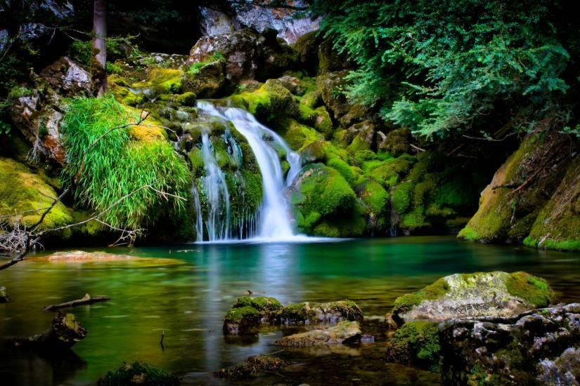 Forest Stream HD Wallpapers - HD Wallpapers Inn