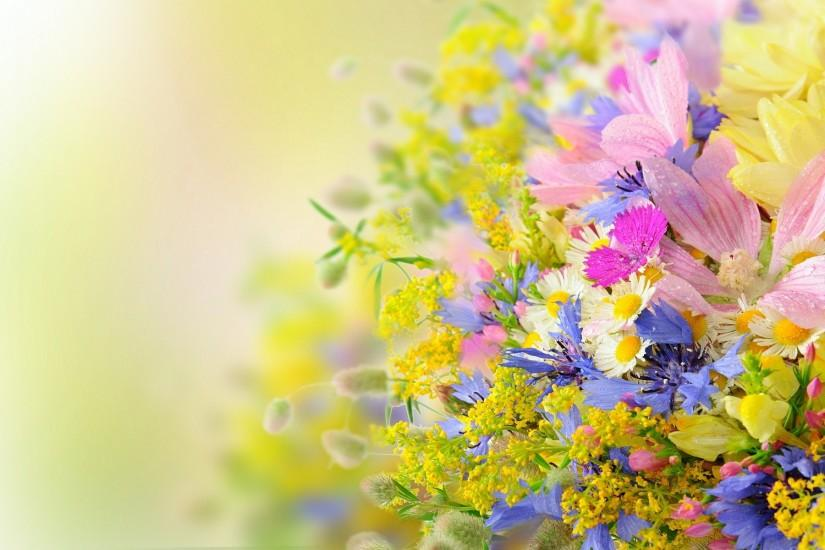 gorgerous flowers background 1920x1200