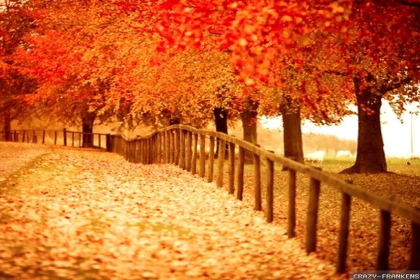 Fall Foliage Desktop Wallpaper 1280×1024 Fall Themed Desktop Backgrounds  (38 Wallpapers) |