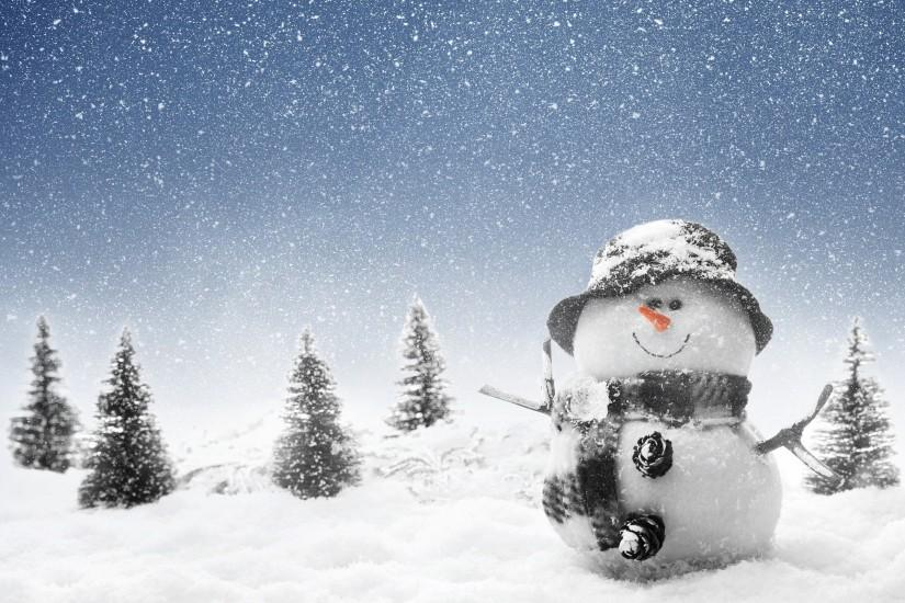 Real Snowman Wallpapers Full HD