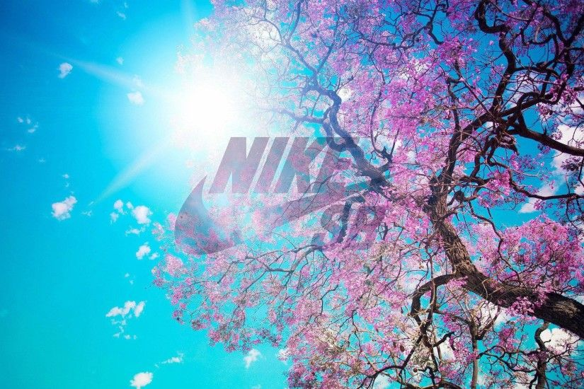 wallpaper.wiki-HD-Nike-Sb-Logo-Wallpaper-PIC-
