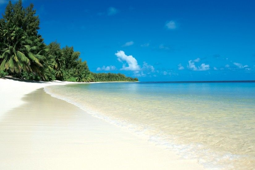 Preview wallpaper beach, tropics, sand, white, palm trees, relax 1920x1080