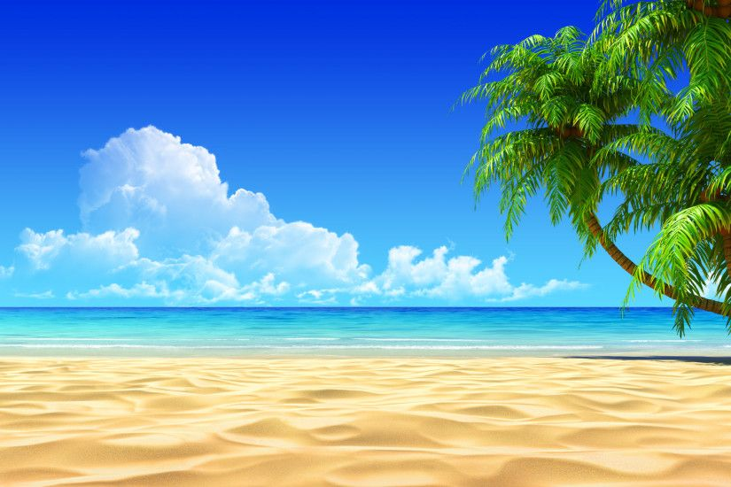 Image for Tropical Beaches With Palm Trees Wallpapers Desktop Background