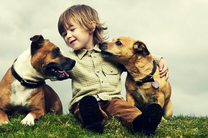 Little Baby With Dogs Best Friends Wallpaper