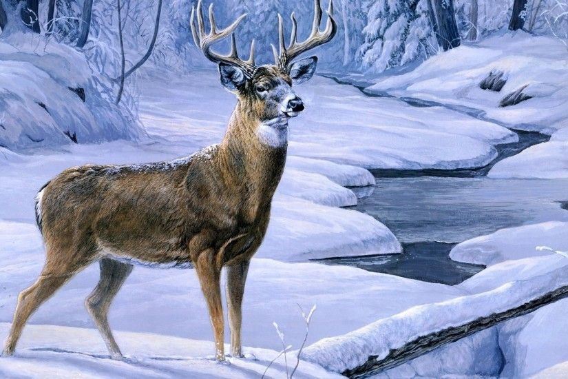 Hd Deer Hunting Wallpaper
