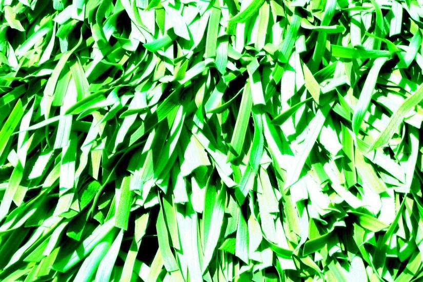 Green Abstract Background Pattern
