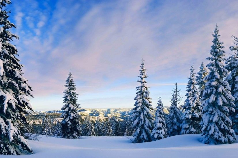 nature, Landscape, Snow, Trees, Forest Wallpapers HD .