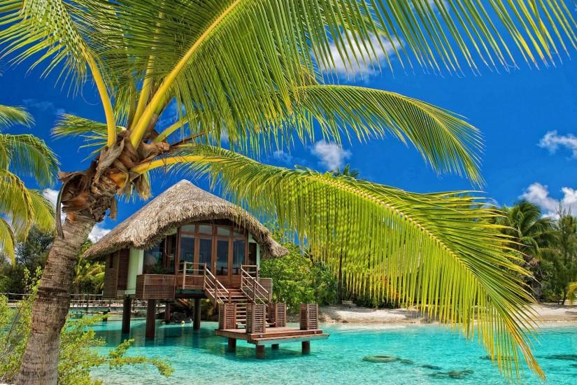 Hut in the water by the palm trees wallpaper