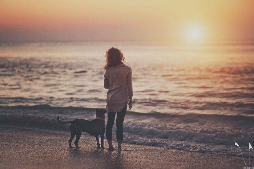 sea, Dog, Sunset, Beach, People Wallpapers HD / Desktop and Mobile  Backgrounds