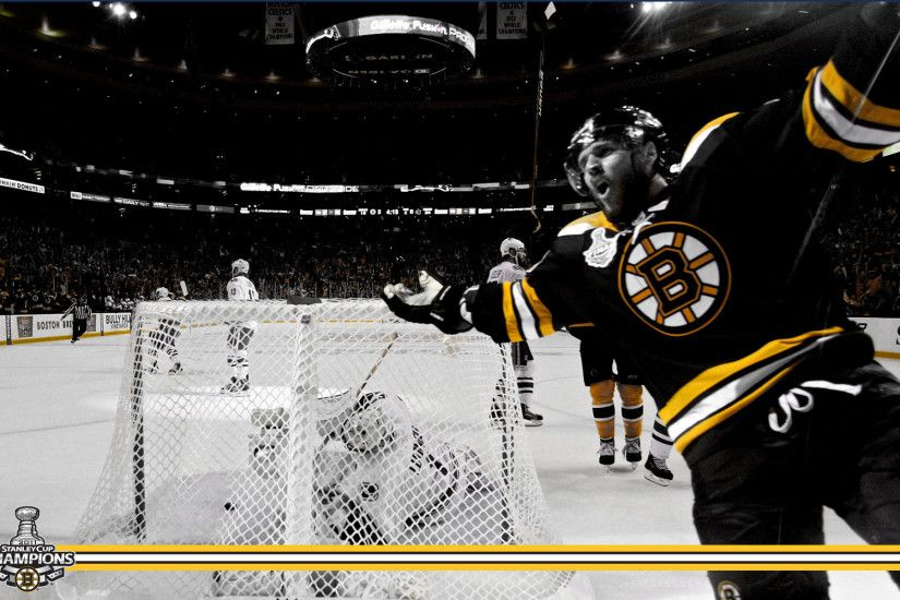 Boston Bruins images Stanley Cup Champions: David Krejci HD wallpaper and  background photos