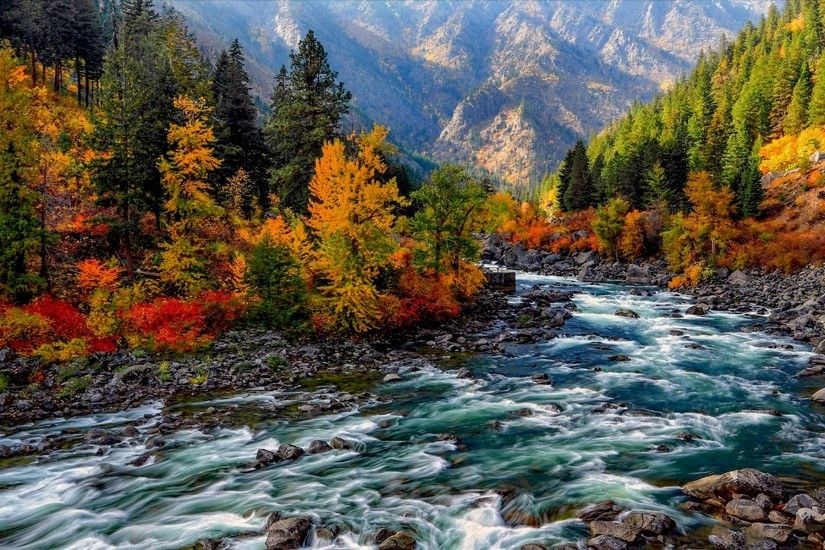Earth - River Forest Earth Fall Foliage Tree Rock Mountain Wallpaper