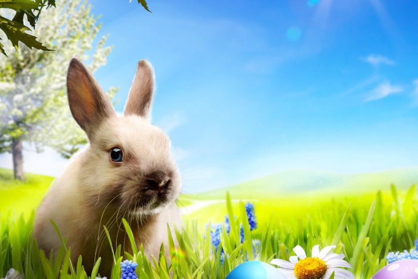 easter bunny wallpapers for mobile happy new year 2018 images