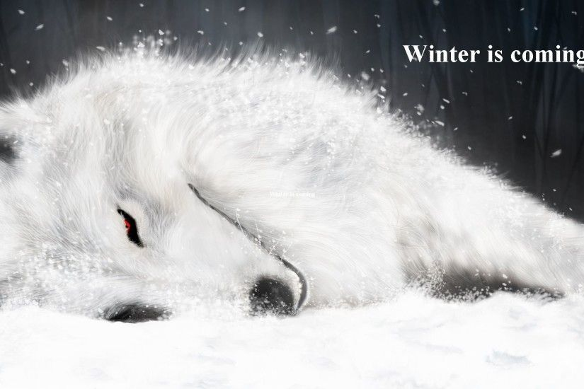 Anime - Wolf's Rain Beautiful Wallpaper. Download! Next Wallpaper · Prev  Wallpaper. Winter is Coming