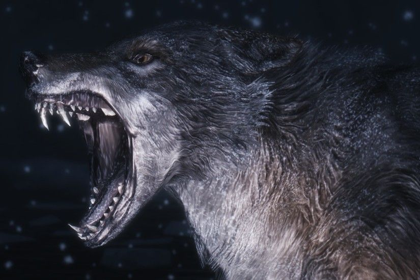 5. wolf wallpapers5