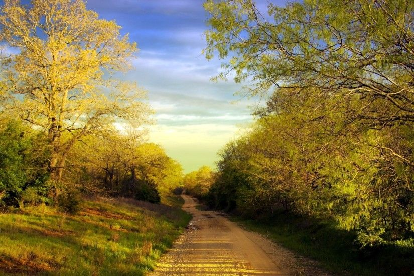 Wallpapers Backgrounds - road soil country trees spring pools