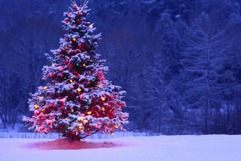 free download christmas tree background 1920x1080