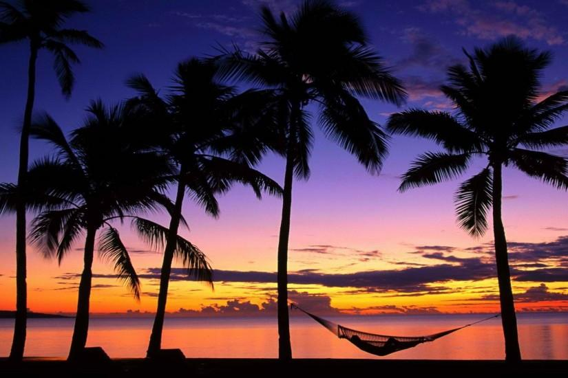 Tropical beach at sunset and palm hammocks Wallpapers, Beach Pictures .