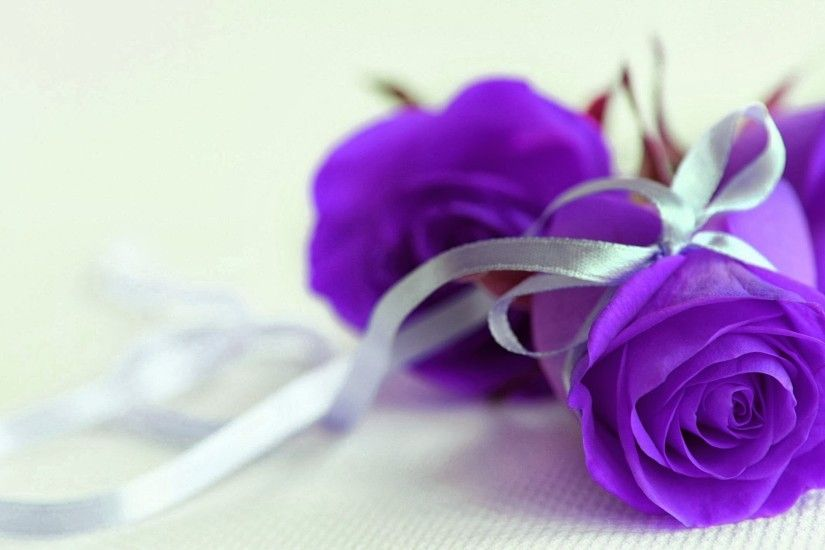Purple roses with silver ribbon