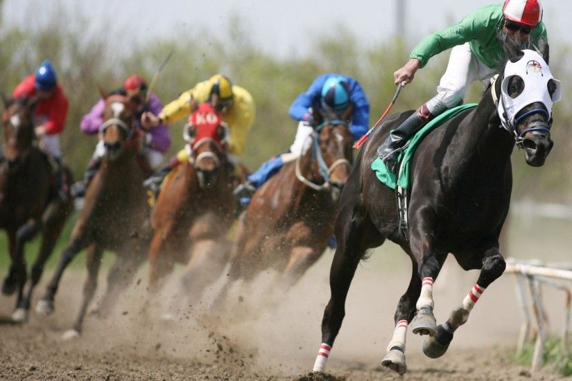 Horse Racing Wallpapers Widescreen