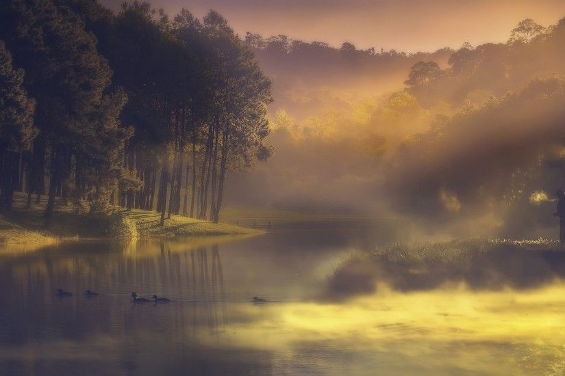 nature, Water, Landscape, Lake, Mist, Sunrise, Forest, Duck, Fisherman,  Hill, Trees Wallpapers HD / Desktop and Mobile Backgrounds