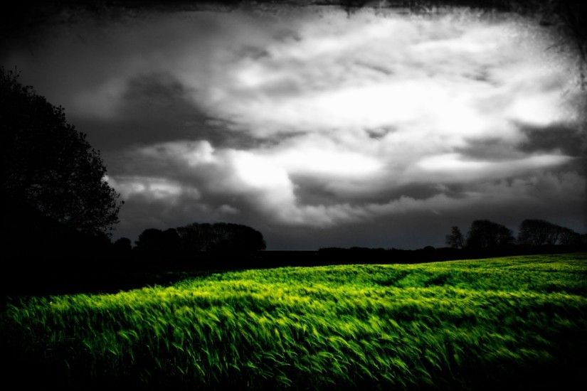 1920x1200 Dark Sky Trees & Grass Field