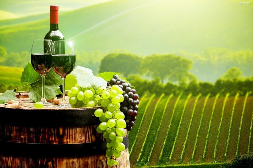 fuzzy, vineyard, Wine, background, Grapes
