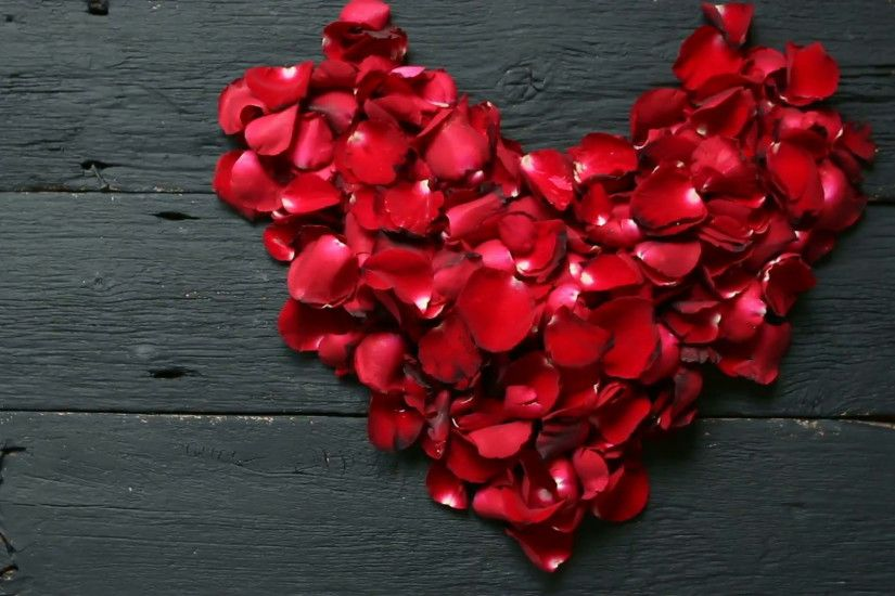 HD footage, Dolly Red rose petals heart shape on black background Stock  Video Footage - VideoBlocks