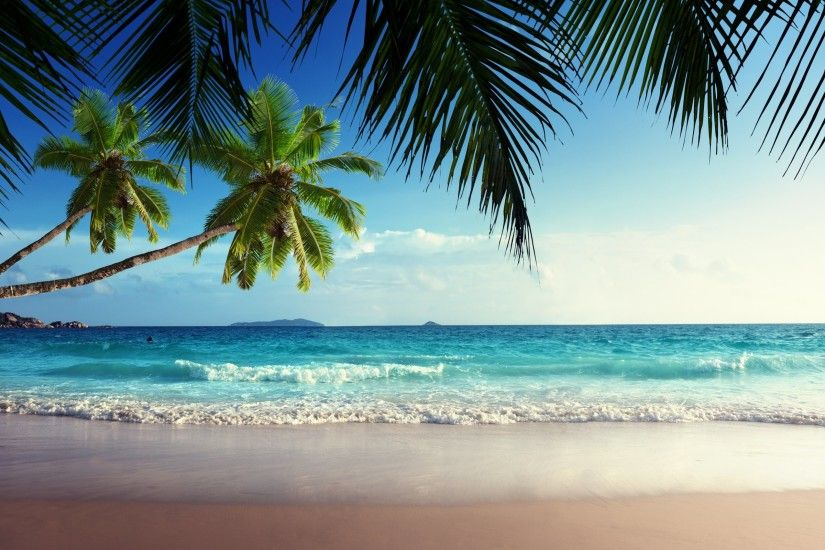 Tropical Beach Wallpaper - Wallpapers Browse