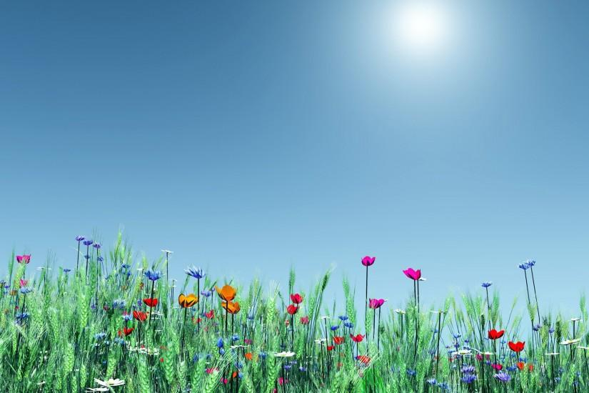 spring backgrounds 1920x1200 picture