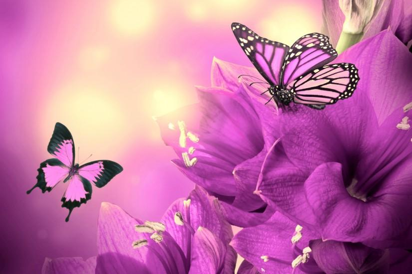 most popular butterfly background 2880x1800 retina