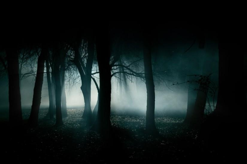 Dark Forest Wallpaper - MixHD wallpapers