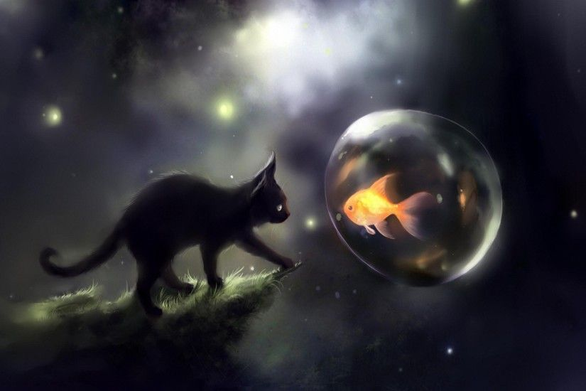 cute space cat fish hd wallpapers